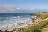 バルバドス ・ shoreline2 — ストック写真
