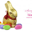 Golden Easter Bunny — Stock Photo