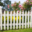 Old Picket Fence — Stock Photo #2368068