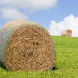 Royalty-Free Stock Photo: Summer Hay Bales