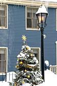 Snow Christmas Tree — Stock Photo