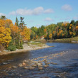 Newfoundland River — Stock Photo #2371583