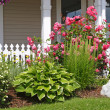 Flower Bed — Stock Photo #2371969