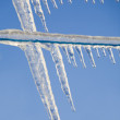 Stock Photo: Cloths Line Icicles