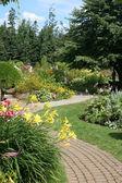 Daylily Garden 2 — Stock Photo