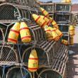Lobster Traps & Buoys — Foto Stock