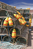 Lobster Traps & Buoys — Stock Photo