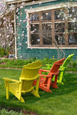 Magnolia Chairs 1 — Stock Photo