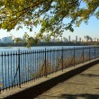 NYC Central Park reservoir — Stock Photo #2329335