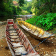 Boats beside a Borneo river — Stock Photo