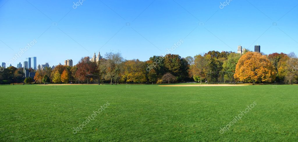 Panoramic view of fall grass and trees, Great Lawn, Central Park, Manhattan, New York  Stock Photo #2415527