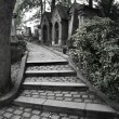 Graveyard steps — Stock Photo