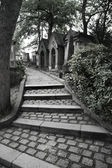 Graveyard steps — Stock Photo