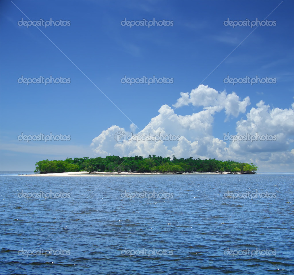 Small tropical island in the blue. Florida, USA — Stock Photo #2476115
