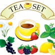 Tea set aromatic plants - Stockvectorbeeld