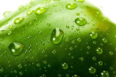 Green bell pepper with water droplets — Stock Photo