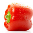 Red sweet pepper - Stock Photo