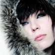 Fashion girl with furs — Stock Photo #2487644