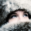 Fashion girl with furs — Stock Photo #2487738