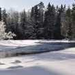 Stock Photo: Winter river landscape