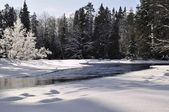 Winter river landscape — Stock Photo