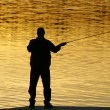 Stock Photo: Fishing at sunset