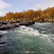 Scenic river in autumn — Stock Photo