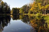 река осенью — Стоковое фото