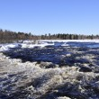 River in winter — Stock Photo #2652896