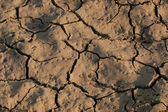 Dry, cracked land, look like badland — Stock Photo