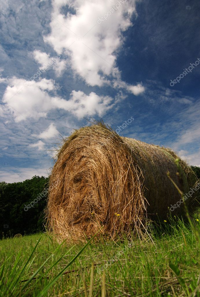 Straw bale with nice cloudy sky  — Stock Photo #2395390