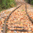Train track in autumn - Stock Photo