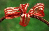 Ornamented ribbon — Stock Photo