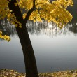 Stock Photo: Calm autumn
