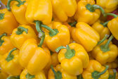 Yellow pepper vegetables — Stock Photo