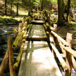 Narrow wooden bridge in the park - Stock Photo
