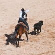 Stock Photo: Breakaway roping