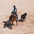 Breakaway roping — Stock Photo #2330550