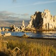 Mono Lake — Stock Photo