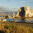 Mono Lake — Stock Photo #2678279