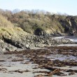 Stock Photo: Polridmouth Beach