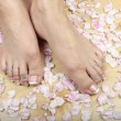 Stock Photo: Womfeet and rose petals