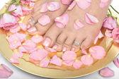 красивая женщина ноги с лепестками цветов — Стоковое фото