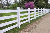White wood fence — Stock Photo