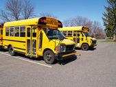 Two yellow school buses — Stock Photo