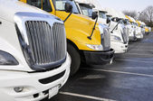 Row of large trucks — Stockfoto