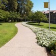 Curving sidewalk on a college campus - Stock Photo