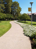 Curving sidewalk on a college campus — Stock Photo