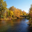 River and trees in autumn — Stock Photo