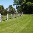 Stock Photo: Split rail wood fence by field